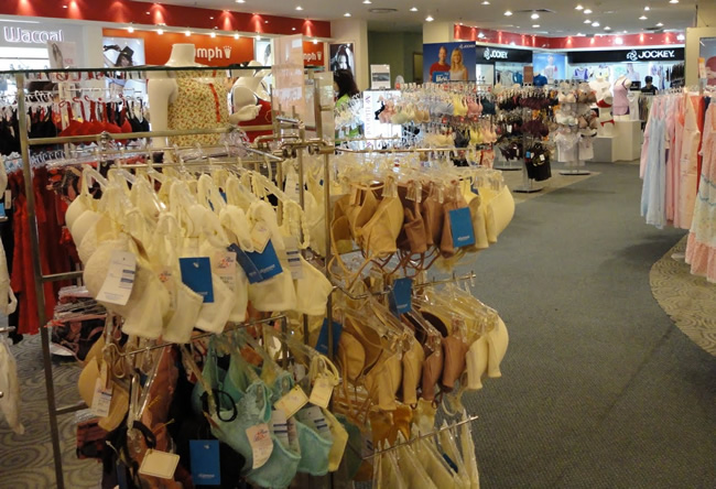 The Lingerie Section